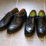 パラブーツの靴2足、メンテナンスのついでに眺めて楽しむ‥